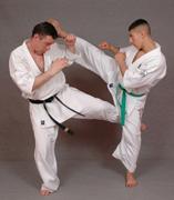 Co daje karate